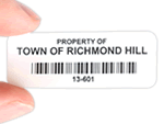 Economy Property ID Labels