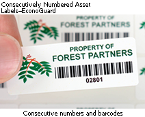 Consecutively Numbered Asset Labels