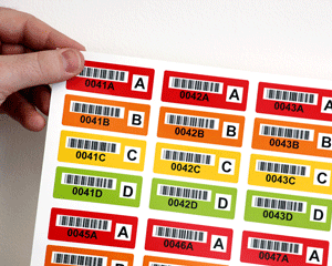 Color-coded barcode labels in sets