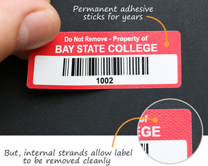 Removable Polyester Barcode Labels