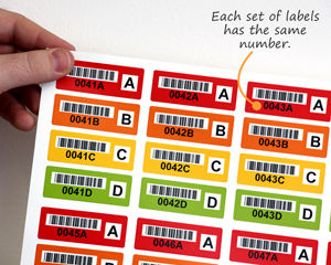 Sets of colored barcode labels
