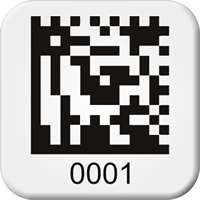 Sequential Pre-Numbered 2D Barcode Labels, 0.75 x 0.75